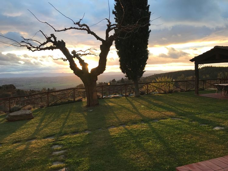 Toscana vista sulla val di Chiana Agriturismo Agritourism Riposo Campagna Toscany Italy Sunset Tree Sky Nature Beauty In Nature Tranquility Scenics Outdoors Landscape Grass First Eyeem Photo