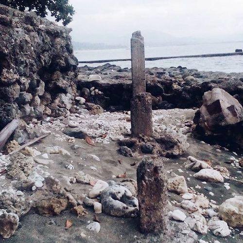 Remains ... Vscocamph VSCOPH Vsoiligan Vscocam Vscoilgn
