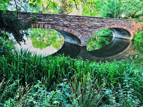Water Day Nature Growth No People Outdoors Green Color Bridge - Man Made Structure Reflection Tree Leaf Plant Tranquility Grass Scenics Beauty In Nature Architecture