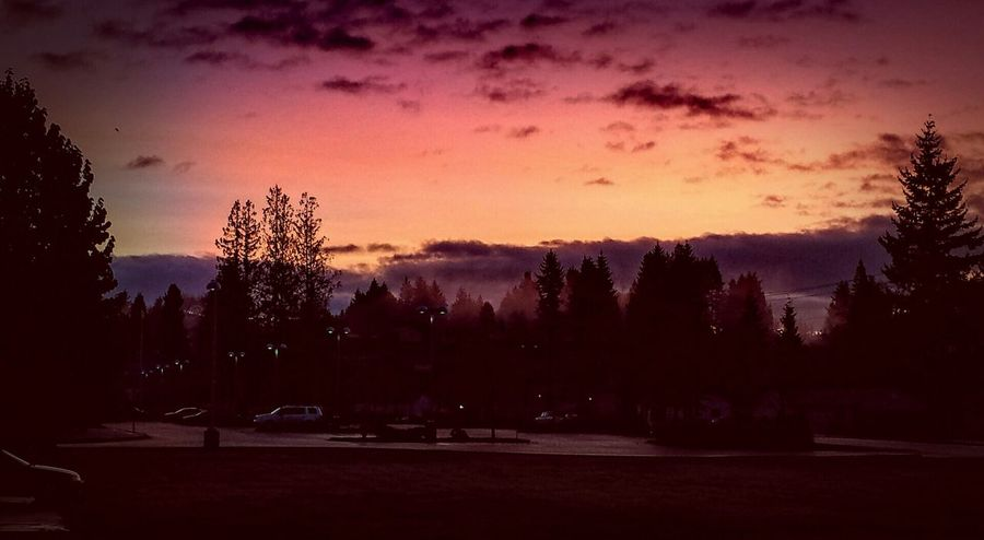 Red sky at morning; sailors take warning. Early am in Arlington, Washington. And my 25th wedding anniversary. Taking Photos EyeEm Best Shots Photos Around You Eyeem Photography Eyeem Photo Color Eyeem Best Shots Eyeem Gallery Landscape_photography EyeEmBestPics Interesting Perspectives Outdoor Photography Creative Light And Shadow Eye4photography  This Week On Eyeem Clouds And Sky Skyscape Beautiful Sunrises Makes Me Happy Fall_collection Lightpainting Fall Colors Looking Out My Front Door Morning Light Early Morning Sky Artphotography Treescape Good Morning