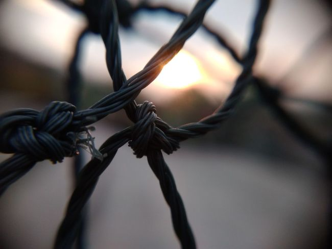 EyeEm Selects Rope Close-up Tied Knot No People Protection Tied Up Outdoors Strength Day Nature Thick