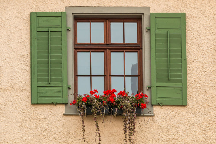 Window with green shutters and a flower box with red flowers Window Flower Flowering Plant Building Exterior Built Structure Architecture Plant Building No People Day Residential District House Nature Wall - Building Feature Closed Glass - Material Green Color Outdoors Window Box Door Window Frame Flower Pot