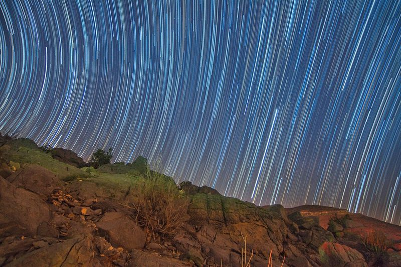 Star trails Nightphoto Longexposurephotography Long Exposure Nightphotography Astronomy Astrophotography Startrails Stars No People Nature Tree Blue Plant Sky Low Angle View Pattern Beauty In Nature Scenics - Nature Land Night Landscape Outdoors Illuminated Forest Tranquility Science Growth Environment