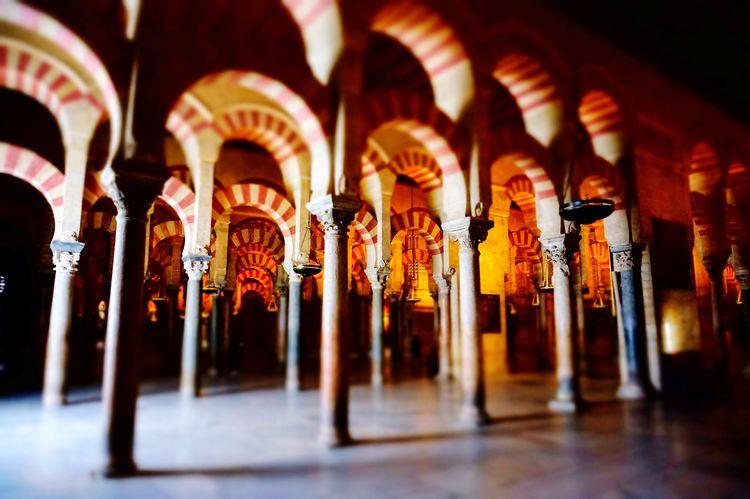 Mosque Church España SPAIN Andalucía Religion Meditation Dark Forrest darkness and light Light Shadow Shadows & Lights Córdoba Moorish Architecture Arabic Arabic Style EyeEm Selects Indoors  Travel Destinations Religion Spirituality No People Close-up Architecture