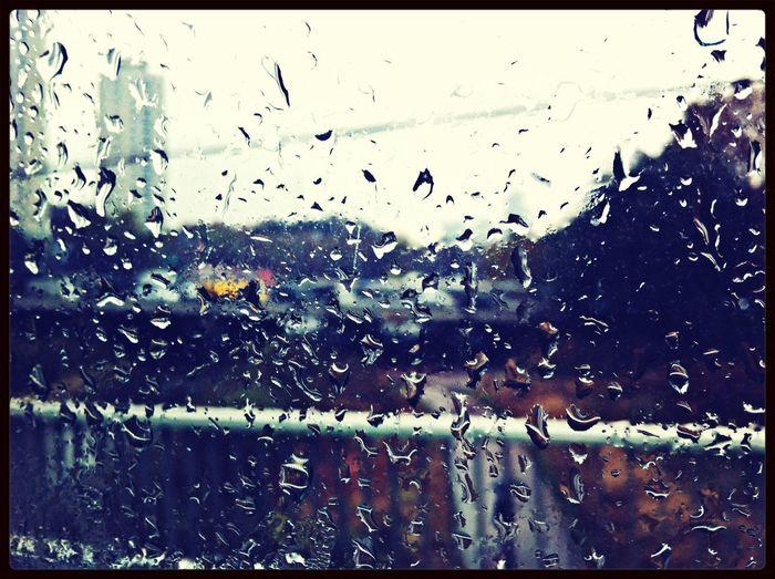 어제는 비가 왔어요 강원도 쪽엔 태풍으로 피해가 많았다고 하지요 오늘은 눈이 온다는데 내가보는 첫눈이 되겠네^_^