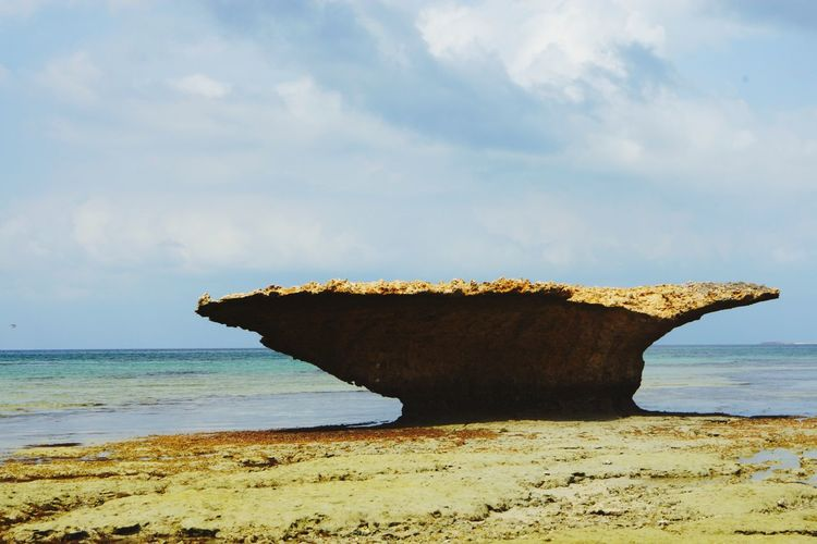 Beauty Beauty In Nature Sea Beach Nature Horizon Over Water Sand Rock - Object Beauty In Nature No People Day Sky Sea Life