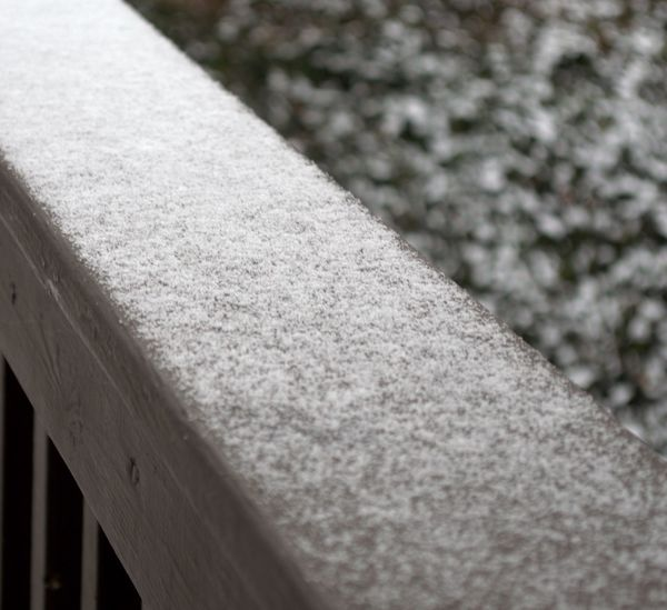 Snow Snow Covered Snowing Snow ❄ Focus On Foreground Dusting Surface Level Close-up Railing Outdoors Greatergreenvillesc Nikon D3200 Nikonphotography Portfolio Documentingyears Taylorssouthcarolina Southcarolinapictures Seasons Snowandice