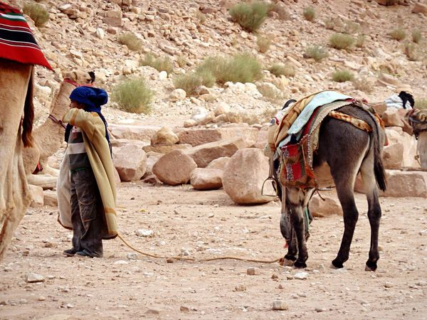 A young nabataean with his donkey People Children Petra Jordan Nabatean People Watching Service Animals