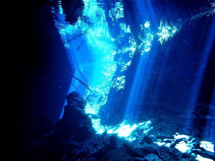 Cenote Shadows