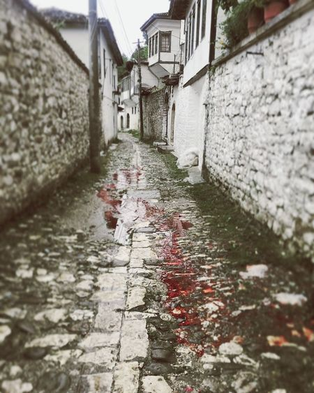 Randomly walking trough the streets of Berat when all of a sudden my feet are standing in a pile of blood cause next door a sheep is being slaughtered and a women is yelling - SANTA CHRISTUS - Albania Goodmorningalbania Berat UNESCO World Heritage Site Whitecity Redcity Ohlord Rain Blood Velvet Karfreitag GoodFriday  The Architect - 2016 EyeEm Awards The Street Photographer - 2016 EyeEm Awards The Photojournalist - 2016 EyeEm Awards Original Experiences Feel The Journey