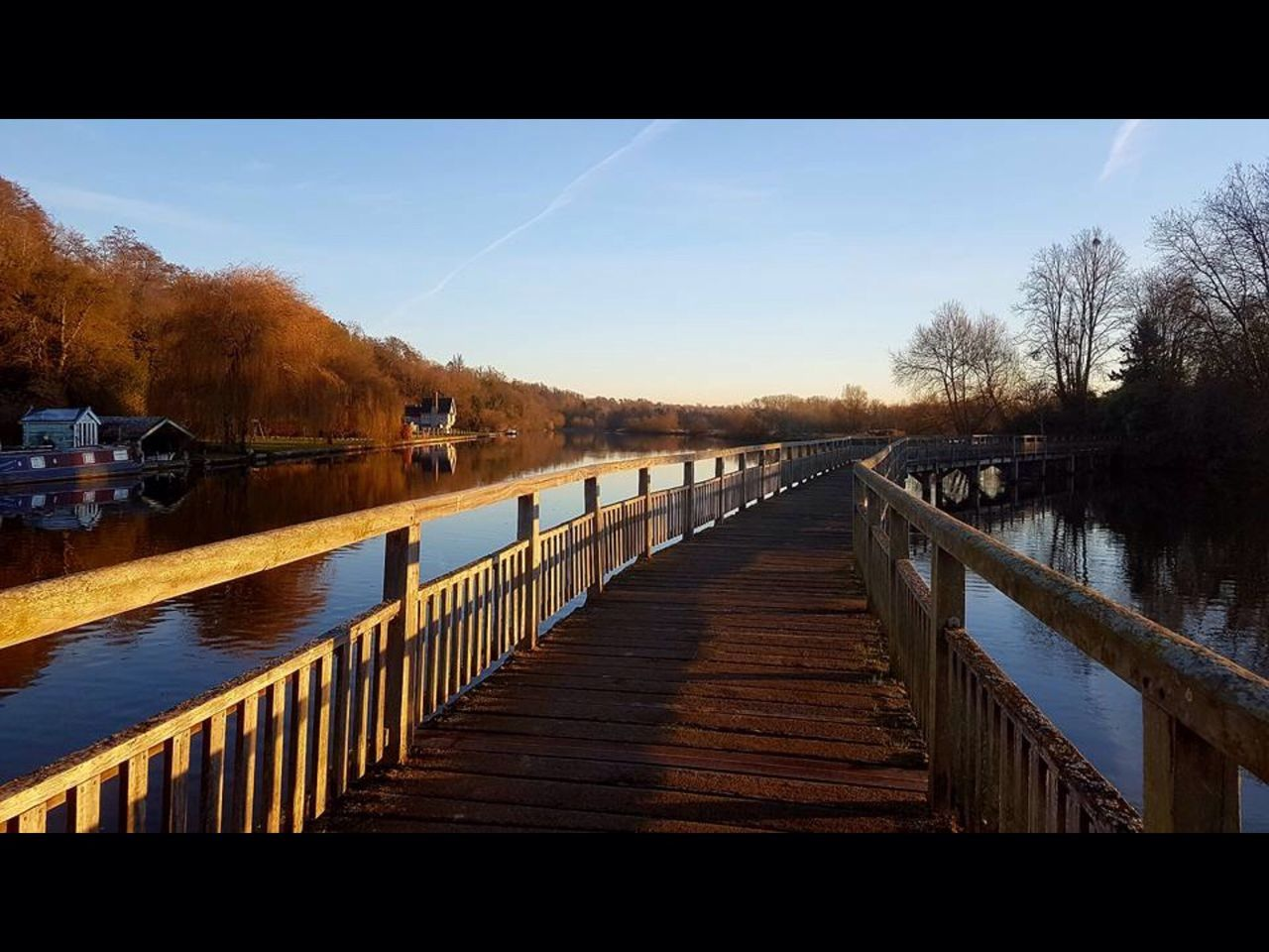 railing, tree, water, no people, lake, outdoors, nature, tranquil scene, tranquility, sky, day, the way forward, scenics, beauty in nature, built structure, footbridge