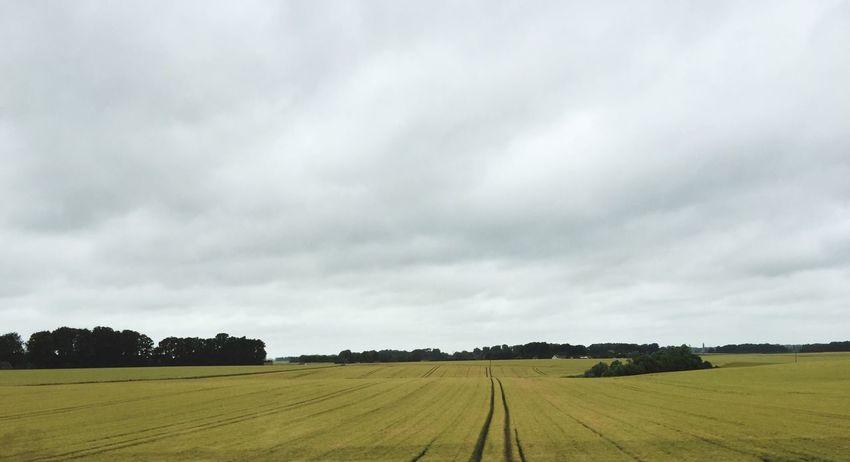 Normandia  Tempo Cupo Grigio Campi