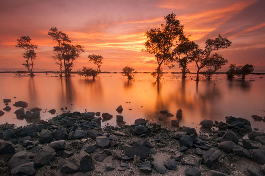 Beauty In Nature Cloud - Sky Day Idyllic Lake Nature No People Outdoors Rock - Object Scenics Sky Sunset Tranquil Scene Tranquility Tree Water