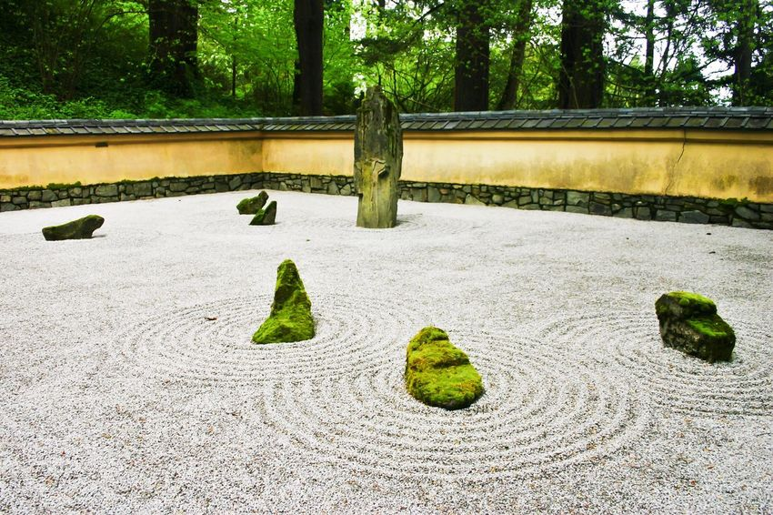First time at a zen garden as big as this place, was absolutely stunning. Japanese Garden Tree Green Color Growth Day Outdoors Nature No People Plant Beauty In Nature Architecture