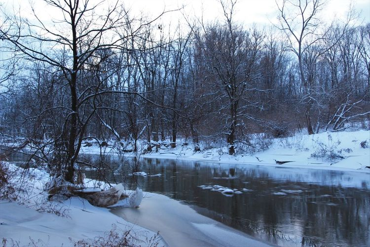 found my way to a creek I see every day from the bridge overpass on the way to work - beautiful find! Ice Morning Light Bare Tree Beauty In Nature Cold Temperature Day Frozen Nature Nature No People Outdoors Scenics Snow Stream - Flowing Water Tranquil Scene Tranquility Water Winter