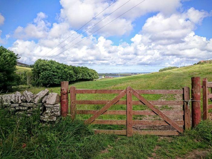 8 bar gate