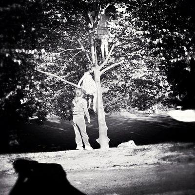 *ْTree of Life Tweegram Dailyfeature Street Statigram Streetphotography Igersgermany Camera Igtube Noir Igersmunich Blackandwhite Iphonephotography IPhone4s F_harry Iphonesia Tree_series Instagram Picoftheday Monoart Instamood Jj  Bnw_society Bwstyles_gf