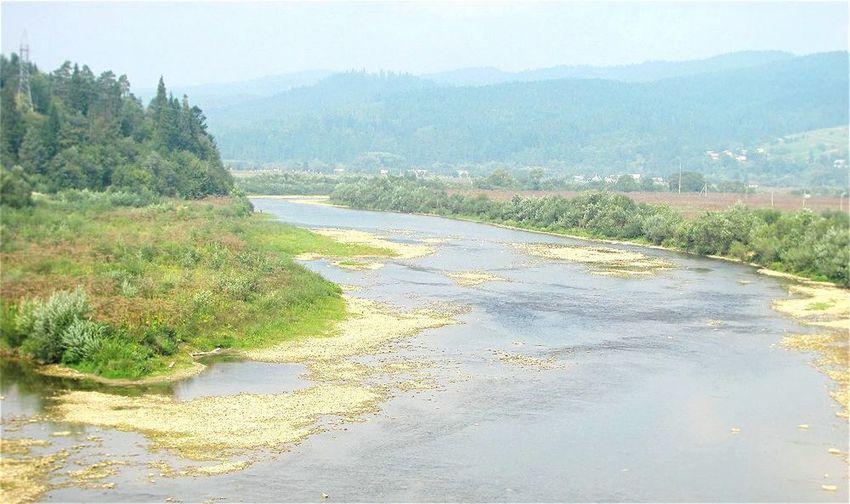Relaxing Nature Sammer River
