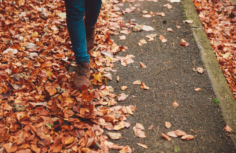 Low section of man walking on fallen leaves