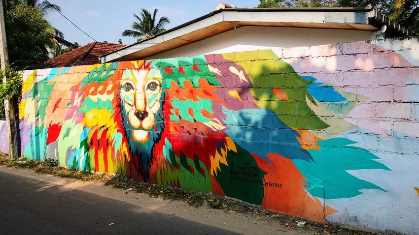 Streetart Multi Colored Graffiti Creativity Building Exterior No People Streetart Eyeemphotography EyeEmNewHere IPhoneography Iphoneonly SriLanka Unawatuna Weligama Unknownartist