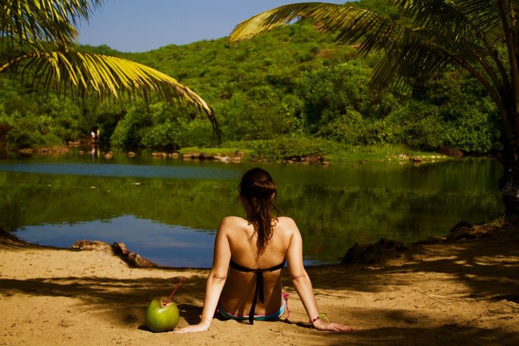 Arambol Back View Of Girl Beach Beautiful Woman Coconut Enjoying The Sun Enjoying The View Goa Lake Leisure Activity Nature North Goa One Person One Woman Only Only Women Outdoors Relaxing Sitting Sweet Lake Tropical Climate Tropical Paradise Vacation Vacations Water Young Women Live For The Story