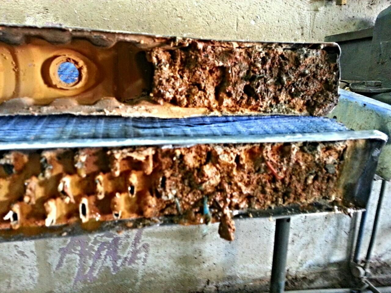 no people, close-up, beehive, day, honeycomb, apiculture, indoors, animal themes