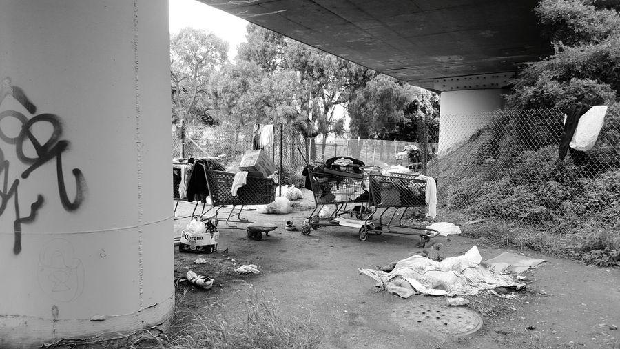 Homeless Sad Homeless Awareness Homeless Camp Homeless Underthebridge