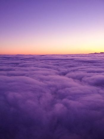 Purple dream cloudscape Nature Beauty In Nature Scenics Sunset Tranquil Scene Tranquility Idyllic Sky Dramatic Sky Awe Purple No People Outdoors Day Bird's View Above Clouds Marshmallow Sky Walking On Clouds Dream A Little Dream