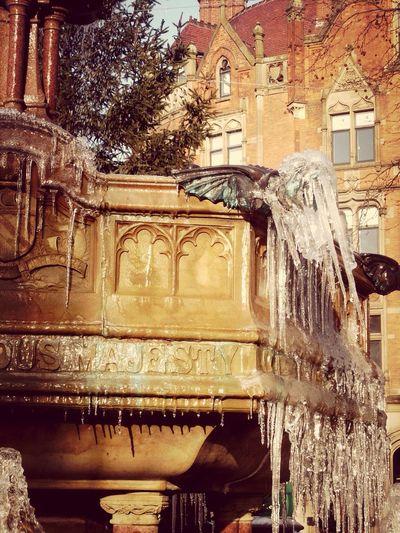 The EyeEm Facebook Cover Challenge Gargoyle Icetears of a gargoyle Winter
