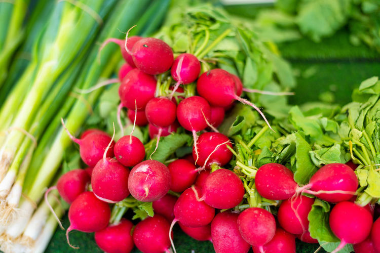 Berry Fruit Close-up Day Food Food And Drink Freshness Fruit Green Color Healthy Eating Large Group Of Objects Leaf Nature No People Plant Plant Part Radish Red Ripe Root Vegetable Vegetable Wellbeing