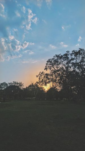 Sunset No People Sky Grass Soccer Outdoors Tree Nature Soccer Field Sport Day The Photojournalist - 2017 EyeEm Awards The Great Outdoors - 2017 EyeEm Awards The Great Outdoors - 2016 EyeEm Awards Live For The Story The Street Photographer - 2017 EyeEm Awards Sunlight The Architect - 2017 EyeEm Awards Silhouette Jaipur_diaries EyeEm Selects Sommergefühle Neon Life