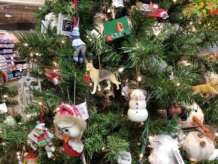 Christmas Christmas Tree Christmas Decoration No People Celebration Day Tradition Christmas Ornament Outdoors Close-up Tree