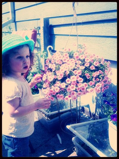 Playing In Flowers