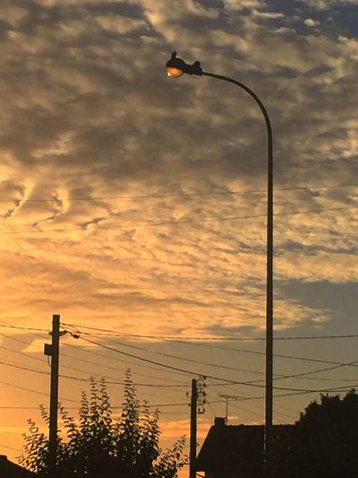 Street Light Sunset Silhouette Birds Lighting Equipment Electricity Pylon Cloud - Sky Ciel En Couleurs Clouds And Sky Ciel Et Nuages CIELFIE Skyfie