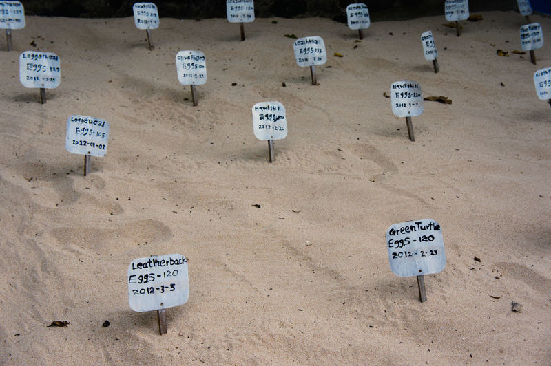 Information sign placards on beach