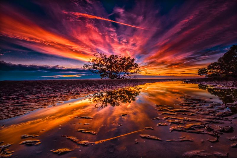 Sunrise reflections Dramatic Landscape Dramatic Sky Sunrise Tree Water Sky Cloud - Sky Sea Beauty In Nature Reflection Scenics - Nature Orange Color Beach Nature Tranquility Tranquil Scene Land No People Idyllic Dramatic Sky Motion Outdoors