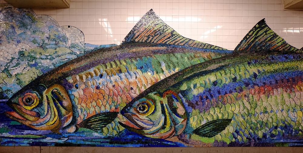 What I didn't catch today, s**t!! Art Creativity Multi Colored Vibrant Color Full Frame Mural Mosaic Photography NYFC!