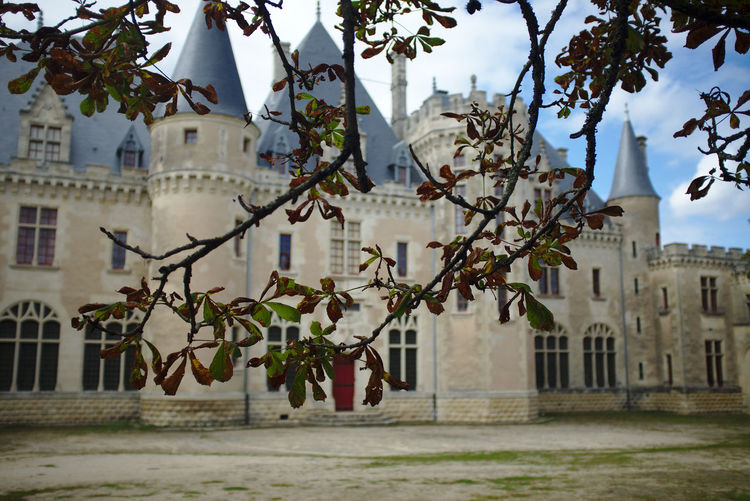 Montaigne Architecture Château Focus On Foreground Leaf Tree First Eyeem Photo EyeEmNewHere