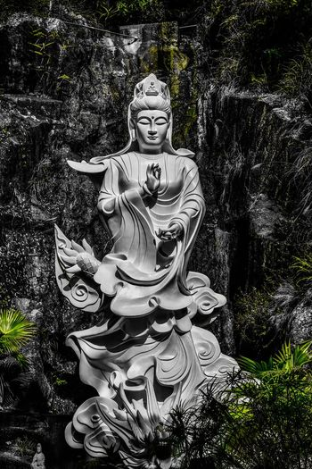 Ten Thousand Buddhas Monastery, Hongkong. Travel Photography EyeEm Selects Beautiful China Hong Kong Ten Thousand Buddhas Monastery Buddhist Temple Buddha Chinese Statue Sculpture Carving - Craft Product Cultures Dragon Tree Spirituality No People Plant Day Outdoors Chinese Dragon