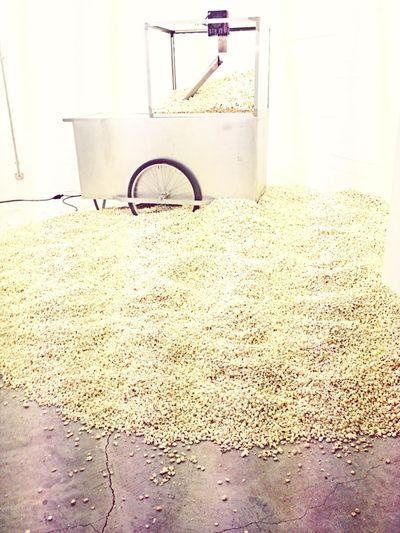 Endless Popcorn