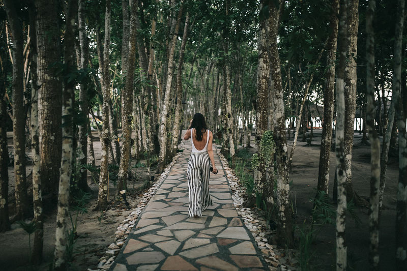 Rear view of woman walking on footpath amidst trees in forest