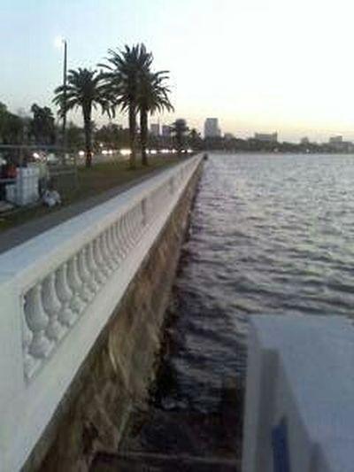 Tampa Florida USA Boatdwalk Sidewalk Sidewalk Photograhy .. Adapted To The City