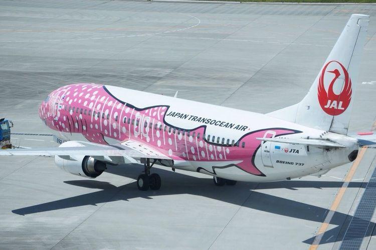 ジンベエジェット Airplane Jta Airport
