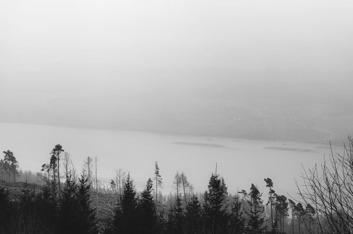 Beauty In Nature Blackandwhite Cold Temperature EyeEm Best Shots EyeEm Nature Lover Fire Forest Forest Photography Lake Lakeview Nature Scenics Scotland Scottish Highlands The Great Outdoors - 2017 EyeEm Awards Tranquil Scene Water Winter Live For The Story