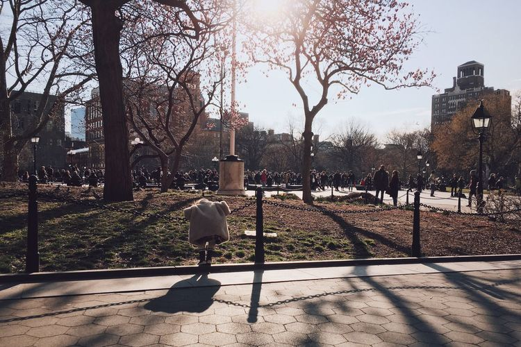 Rear view of man walking on bare tree