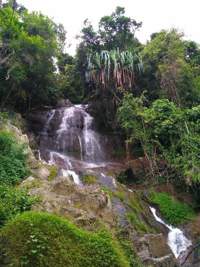 Na Muang Waterfall, Water Nature Tree No People Day Outdoors Green Color Forest Grass Beauty In Nature Sky Palm Tree Growth Plant Branch Scenics Tranquil Scene Tranquility Landscape Stone Beauty In Nature Cloud - Sky Silhouette Nature TreeKo Samui, Thailand