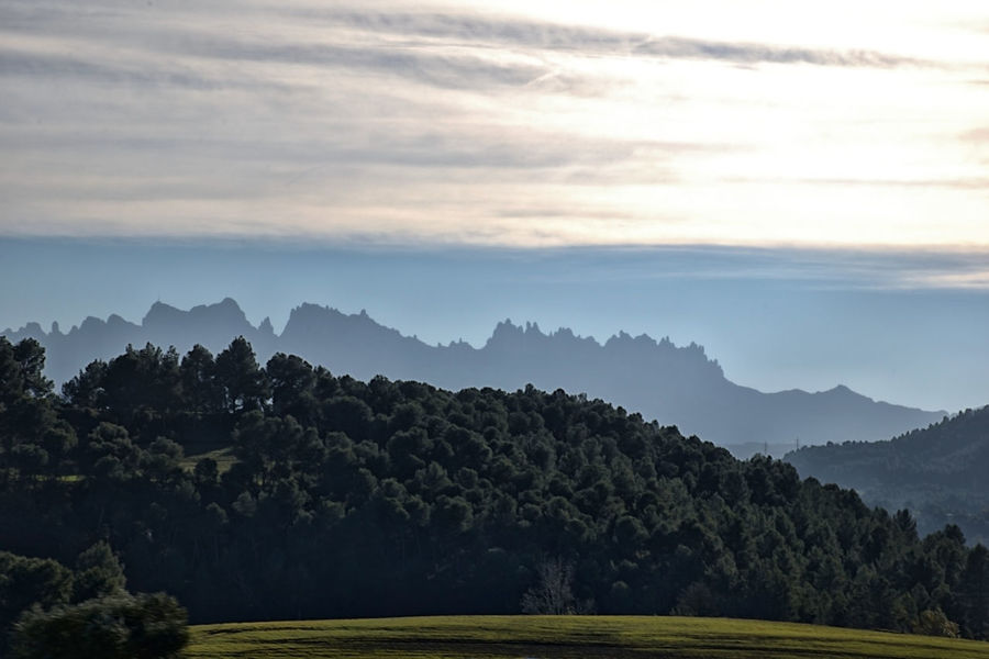 Mountains in Catalonia in autumn Catalonia Hazy  Outdoors Green Color Growth Nature Land Fog Idyllic No People Non-urban Scene Cloud - Sky Mountain Sky Landscape Plant Tranquility Tree Environment Tranquil Scene Scenics - Nature Beauty In Nature Montserrat Mountain