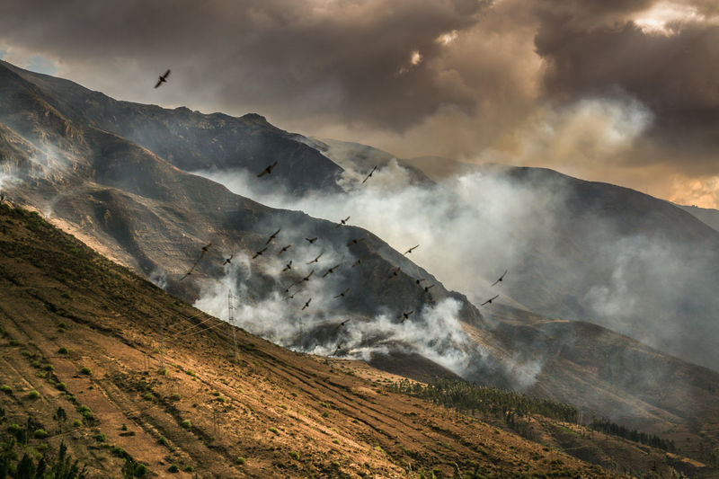 Beauty In Nature Birds Burning Bushfire Cloud - Sky Dark Atmosphere Day Epic Fire Landscape Mountain Mountain Range Nature No People Outdoors Physical Geography Power In Nature Scenics Sky Slash And Burn Smoke Tranquil Scene Tranquility