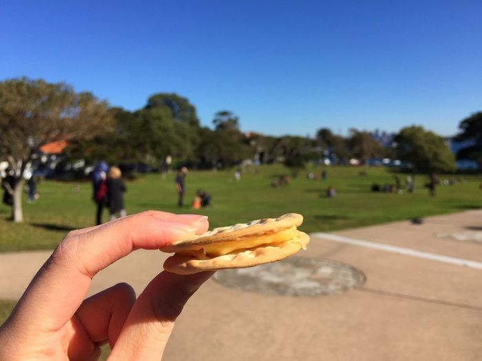 Taking Photos Travel Traveling Sydney Watsons Bay Park Cracker Cheese IPhoneography 7/3