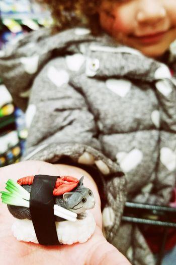 Sushi Cat Close-up Sushicat Toyphotography Hand